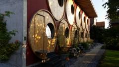 Sudové bungalovy vinařství Rüedi v Trasadingenu