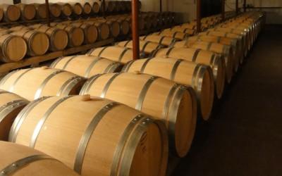 V Damnicích hodovali u vína