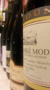 Pinot Noir z Moravy a Čech