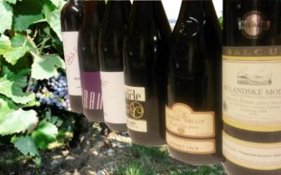 Test: Pinot Noir