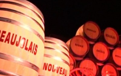 5 důvodů proč pít Beaujolais Nouveau