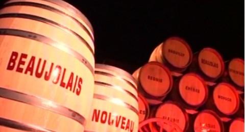 Nové beaujolais je tady! Mladé víno putuje z Francie do světa, Češi spíš slyší na vlastní fenomén Svatomartinské