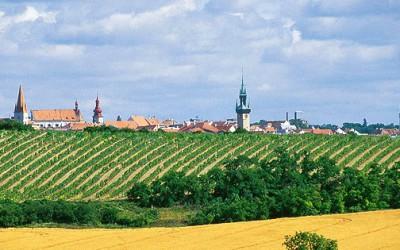 Jihomoravský kraj podpoří projekt Vinobusu