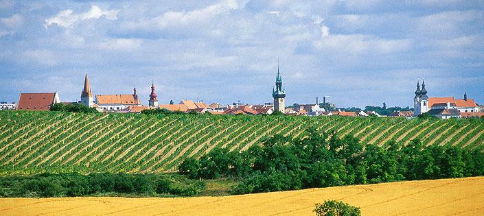 Do systému VOC Znojmo zatřídí další kvalitní vína