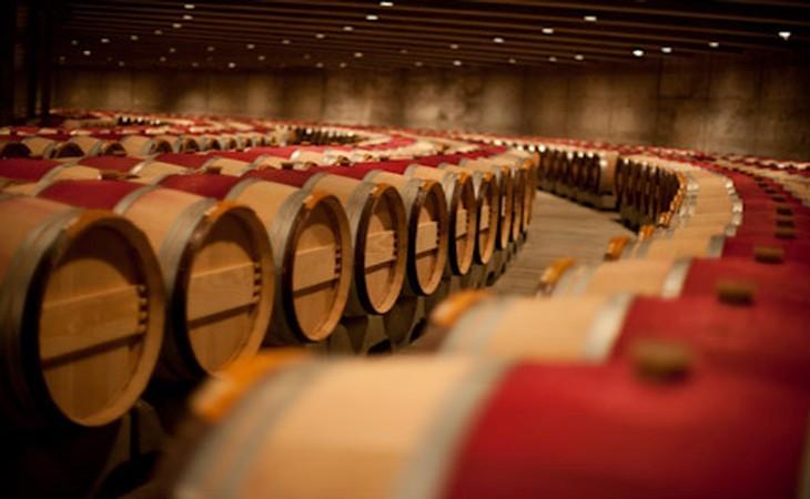 Bordeaux – odrůdy