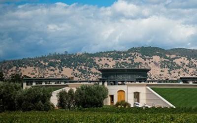 Kultovní vína: Opus One