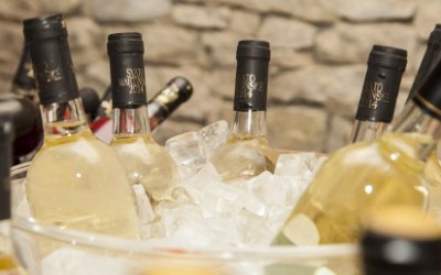Test: Svatomartinská vína