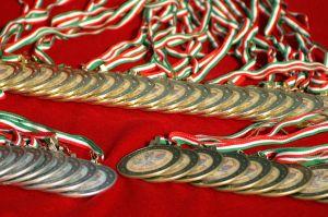 Naši vinaři si loni vysloužili na mezinárodních soutěžích rovných 500 medailí