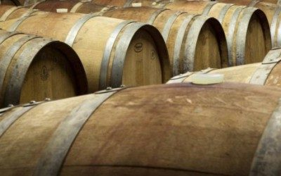 Vědci: Italské víno je o 3000 let starší, než jsme si mysleli