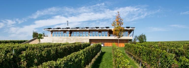 Vinařství Sonberk se letos vrátilo ke slámovému vínu
