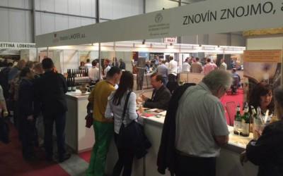 Wine Prague: Překvapivý úspěch