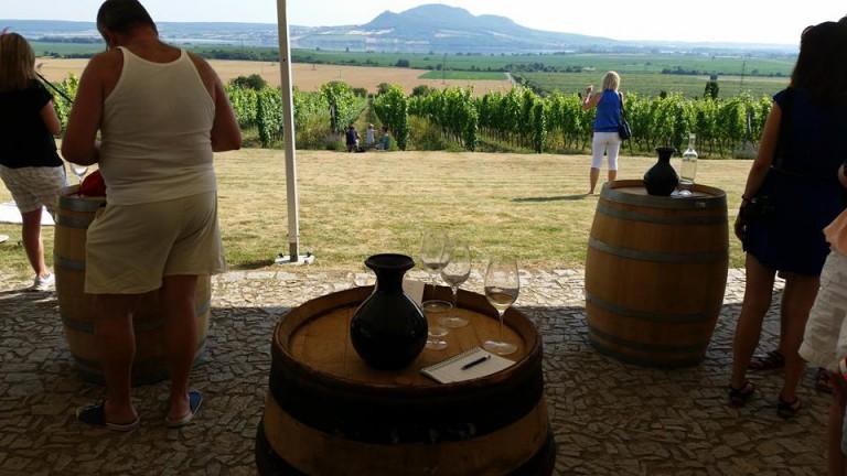 Degustační odpoledne ve vinařství Sonberk.