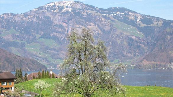 Nejkrásnější vinice Evropy: kde aby zachránili víno, střílí do mraků