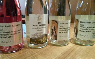 Test: Mladá vína 2015 díl I.