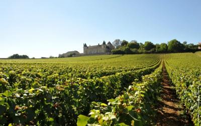 Hledáme nejlepší Chardonnay