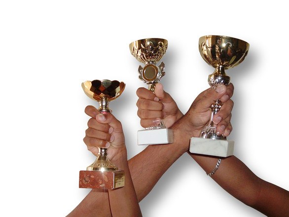 Z Prague Wine Trophy si vinaři z VOC Znojmo odnesli hned 11 medailí