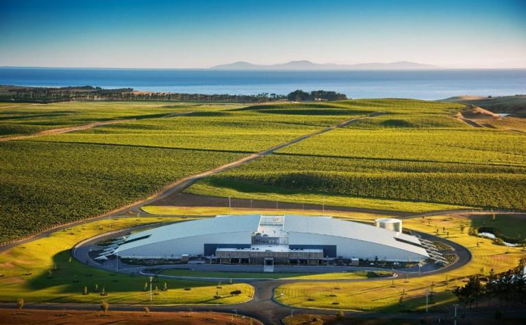 Vinařský fond podpoří kampaní povinné značení domácích vín