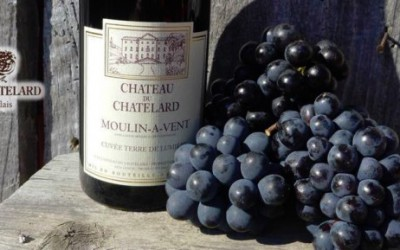 Test: Beaujolais Nouveau 2016