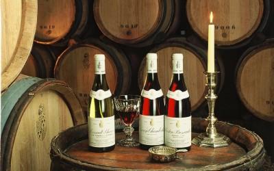 Burgundsko: pár postřehů