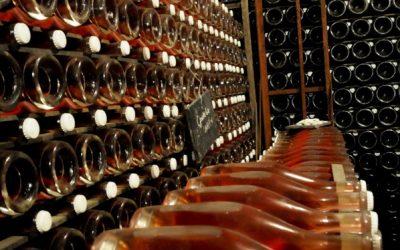 V loňském roce vyrobili moravští a čeští vinaři nejvíce růžového vína v historii