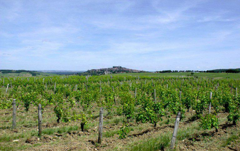 Milujte burčák a víno? Udělejte si za nimi výlety začátkem podzimu. Poradíme kam!