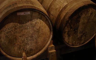 Tasovická výstava vín