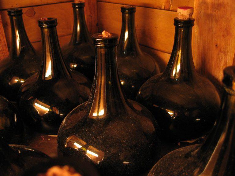 Vinařství na Kyjovsku a odrůdy vín
