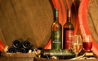 Vinařství roku. Soutěž, která nehodnotí jen víno