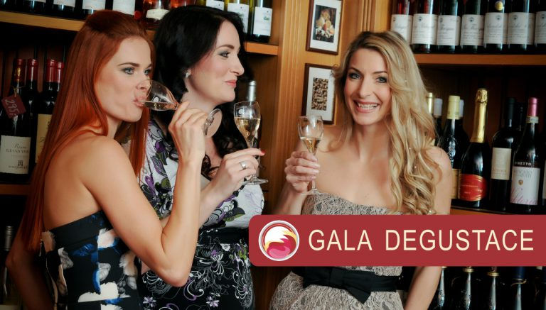 VINO.TK partnerem Gala degustace 2017
