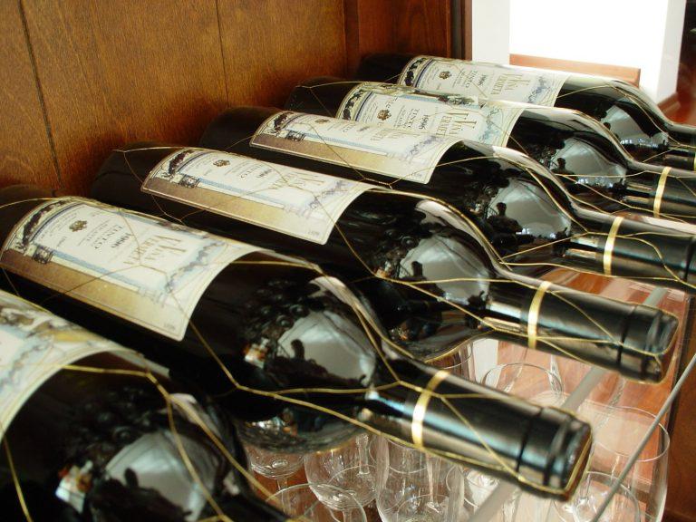 TOP 77 vín v České republice – informace pro vinaře