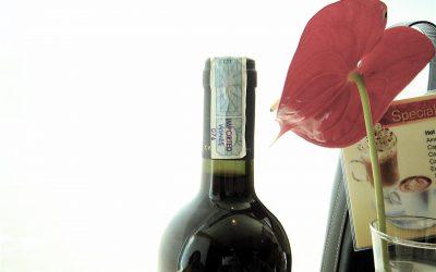 Moldavští vinaři export do Ruska vyměnili za vývoz na západ a do Asie