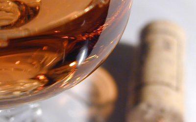 OBRAZEM: Letošní mladé víno je nejlepší za mnoho let, říká vinař