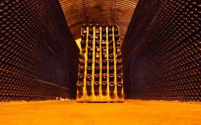První dojmy ze Salonu vín 2019: Někomu půlhodina na ochutnávku chybí, jinému přebývá