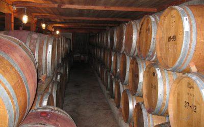 Připijte si na zdraví stovkou nejlepších moravských a českých vín
