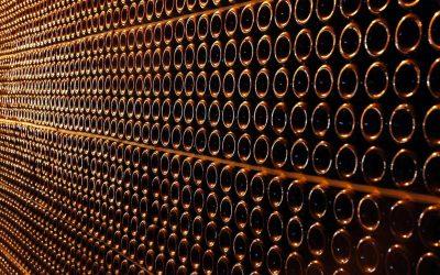 Salon vín slaví dvacet let. S rekordem