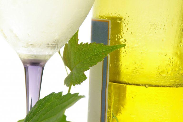 Označení VOC Znojmo má 44 nových vín. Poprvé je ochutnají návštěvníci festivalu
