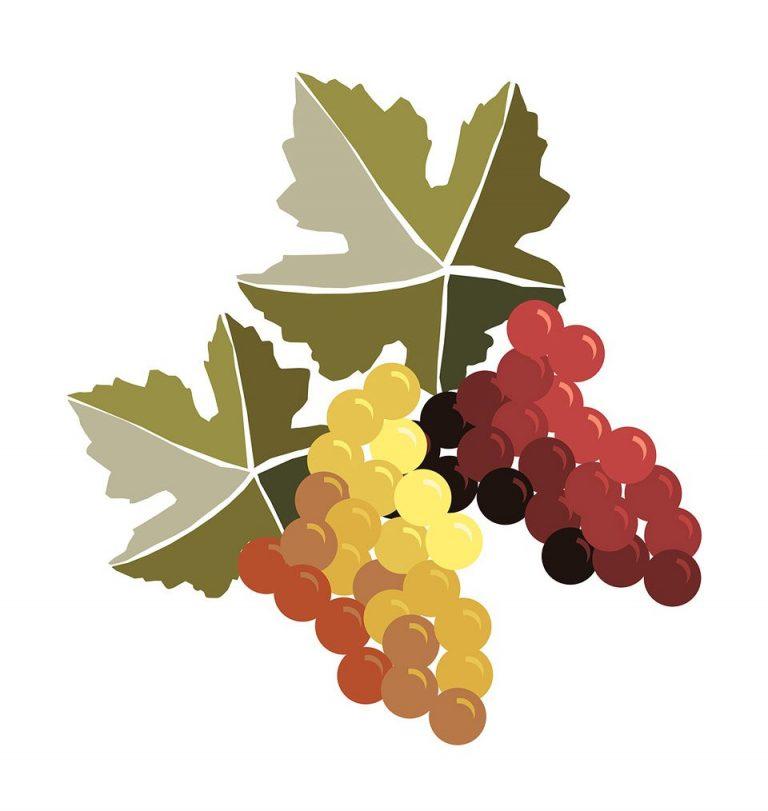 Slavnosti vína a otevřených památek budou v Hradišti už příští víkend