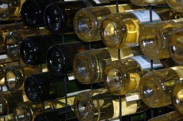 Dobrá vína, která stojí za ochutnání: Tři burgundy z moravských podoblastí
