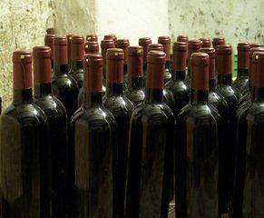 Dobrá vína, která stojí za ochutnání: Tři zajímavá červená z jižní Moravy