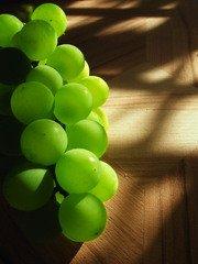 Rulandské bíle ze Zámeckého vinařství Bzenec je nejlepším vínem České republiky pro rok 2019