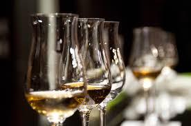 Degustace tuzemských vín v Praze, Brně a jinde v týdnu 22. až 28. dubna 2019