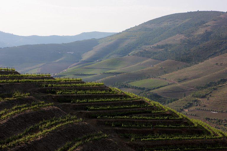 Portugalsko – vše, co jste chtěli vědět o zdejších vínech