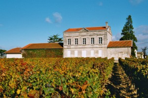 Chateau-de-Domaine-de-lEglise-+-vigne-proche
