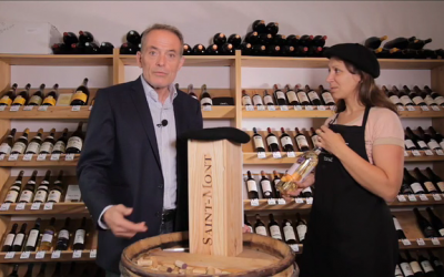 V hlavní roli víno – Colombelle – víno z Gaskoňska – neudržitelná radost pití